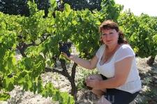 На винограднике в Провансе.