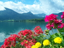 Австрия-Страна солнца, музыки и... сладостей