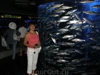 В Аквариуме музея