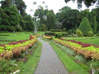 Ландшафты - Королевский ботанический сад.