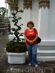 Бангкок (сентябрь 2006)