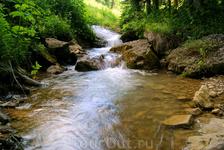 Река Молочка,приток реки Курджипс