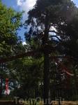А вот и Flow Park Лаппеенранты, где мы снова бросили вызов своей лени)) Флоупарк Лаппеенранты находится на живописном острове Мюллюсаари в несколких минутах ...