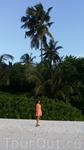 сочная зелень Фихалохи