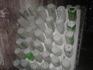 Чистые бутылки  5 февраля 1937 г. издано Постановление Совета Народных Комиссаров СССР N 213 «О расширении сырьевой базы для производства советского шампанского ...