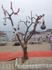 Очень необычный пляж гле-то рядом с бодрумом