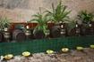 Дворянское поместье Ля Гранья было гостеприимно, дегустация вин