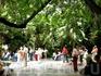 пальмовая площадь, возле улица Сальвадора Дали