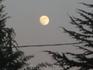 Луна судацкая вечерняя.