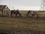 Еще одна группа лошадей