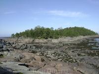 Был отлив и можно было спокойно пройти на соседний Фаресов остров