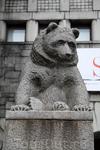 Знайте, медведи на улицах городов России - это не правда. Медведи есть только на улицах Хельсинки.