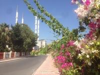 красивая и внутри мечеть Мерсина