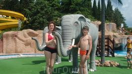 В аквапарке &quotДельфин&quot, расположенном в &quotМиндальной роще&quot.