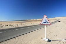 Западная Сахара, Дахла. Мекка серферов.