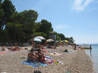 Пляж у сосны. В 2002 г. был признан самым чистым пляжем в мире