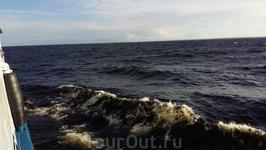 Волна достигала 1,5 метров.