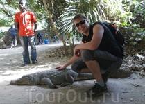 Гамбия, возможно, единственная страна в мире, где вы можете погладить живого крокодила.