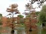 Одно из самых красивых мест - пруд у Хрустального дворца.