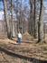 Знаменитая липовая аллея во Львовке.