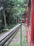 туристический поезд на гору Корковадо к статуе Христа Спасителя