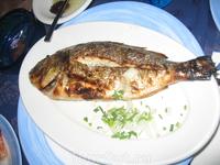 не помню как называется рыбка, но оооооооооооооооочень вкусная!!!!!!!!!! П.С. а когда она живая, то еще и очень красивая ;)