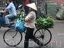 Продавщица свежей зелени