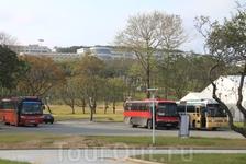 Автобусная остановка на Университетской набережной