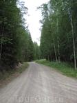 Широкие и удобные дороги проложены через весь национальный парк, но заезжать сюда на машине можно только по специальному разрешению