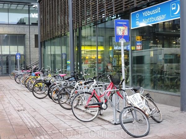 Январь месяц, но прокат велосипедов работает...
