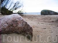 Псковское море - восточный берег Чудского озера в районе деревни Доможирка, Гдовского района.