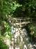 """Мостик на вершине водопада """"Борода Берендея"""".Очень красивый водопад."""