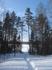 Март 2011г. Тропа к озеру. Ясный день.