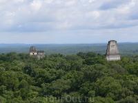 """Город майя Тикаль, существовал с 7 в. до н.э. до 10 в. н.э. То есть около 1700 лет. На языке майя слово """"тикаль"""" означает """"место, где слышны голоса духов"""" ..."""