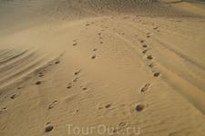 Следы, заметаемые песком
