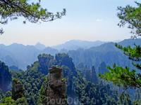 Обитель богов.Национальный парк Чжанцзяцзе.