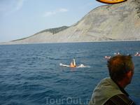 купание в открытом море