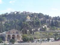 Холмы Иерусалима,