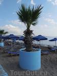 наш любимый пляж в Фалираки рядом с отелем Лидо