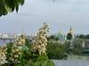 Киев....Милый град, могу часами   по твоим я улицам бродить,   церкви, тут поют колоколами,   чтобы помнить, чтобы не забыть!