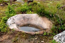 Дождевая вода в камне...