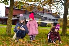 Совсем рядышком с Юнибакен находится музей Васа.Девчонки собирают каштаны, чтобы отвезти их домой в Санкт-Петербург!