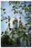 Храм Св. Татианы - был освящён самим Российским патриархом Алексием