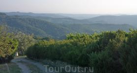 Вид на тосканские холмы