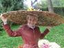 Выставка хризантем на Певчем поле