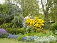 Цветники в Сент-Джеймс парке.