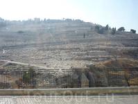 Едем по улицам города. За стеклом - вид на древнее еврейское кладбище. Внизу видны могилы пророков.