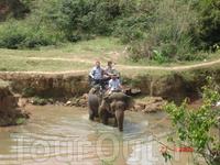 А потом на слоне