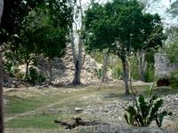 Чичен Ица город был восстановлен из вот таких груд камней, т.е. все пирамид сделаны такими, как их представили себе ученые. Остается только догадываться... камни использовались только те, что находи