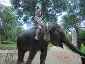 куда же без слонов?